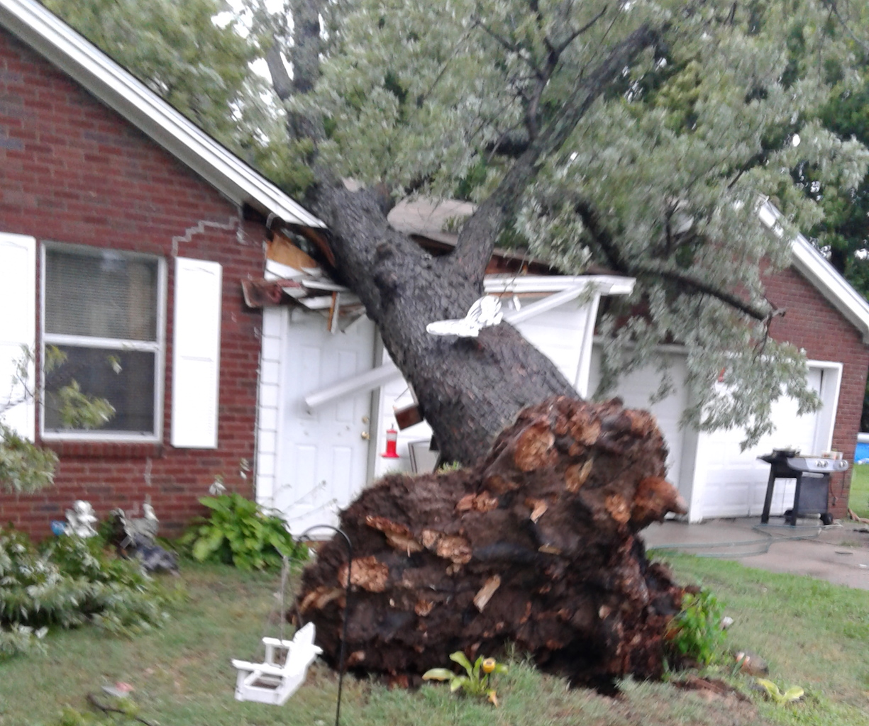 A tree took out part of a house's roof on North K Street by Irving School.