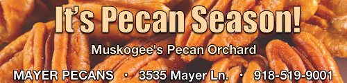 mayer pecan orchard